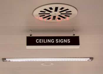 Ceiling signs examples