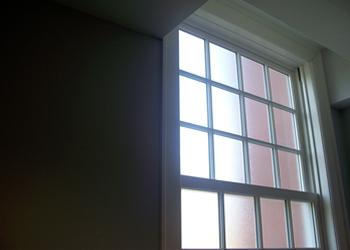 Window film installation in Tampa, FL