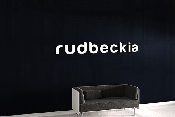 Rudbeckia Corporate Business Signs in Tampa, FL